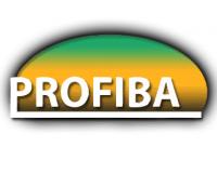 Logo by Molci